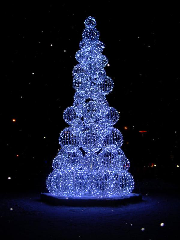 Top ten beautiful christmas trees rafferty 39 s rules - Pretty christmas pictures ...