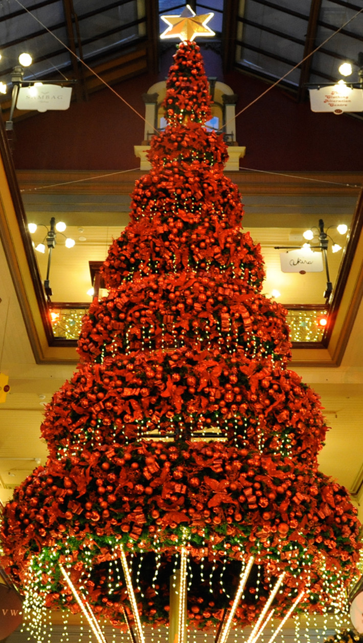 Christmas Trees Decorated In Red
