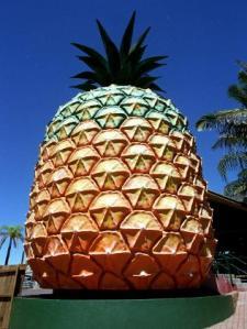 962866-big-pineapple