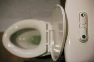 dualflush-toilet