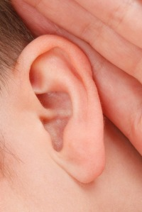 ear - free creative commons public domain image
